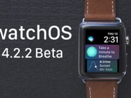 watchos-4-2-2-beta