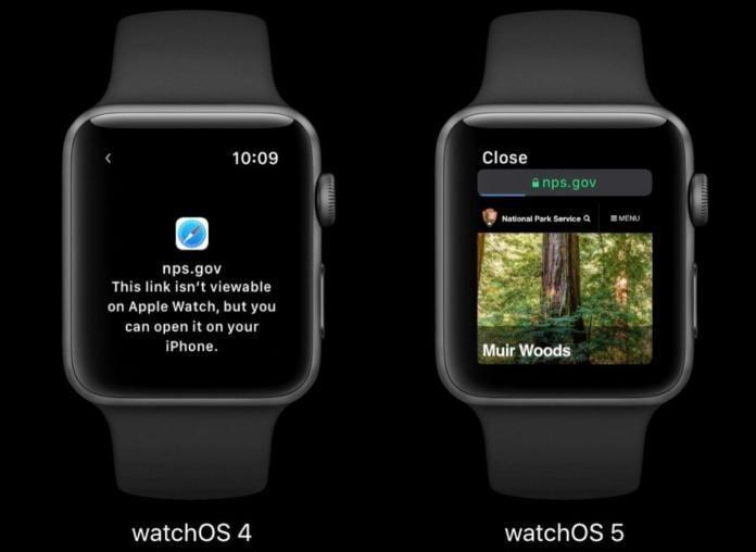 Apple Watch Web Sitesi Verilerini Temizleme