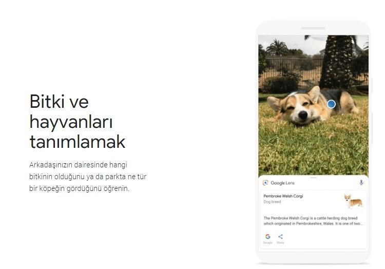 Google Lens nedir nasil kullanilir iPhone' a geldi-2
