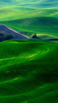 Dreamy Green Fields Countryside iPhone 6 Wallpaper